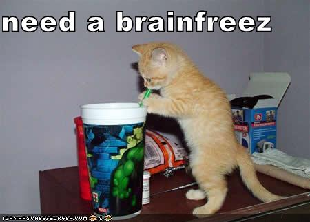 need a brainfreez