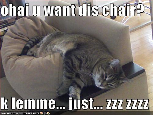 ohai u want dis chair k lemme just zzz zzzz