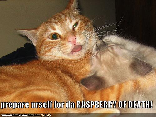 prepare urself for da RASPBERRY OF DEATH