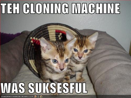 TEH CLONING MACHINE WAS SUKSESFUL