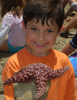 Tide pool exploration, marine science, beach ecology and environmental respect are staples of the Aloha Beach Camp experience. Join us this summer and we'll learn about starfish together!