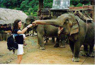 Preparando a Lazami para el safari: unos platanitos para que no se canse
