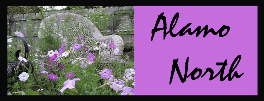 Alamo North