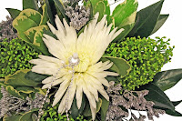 krysantemum Anastasia, skimmia,limonium