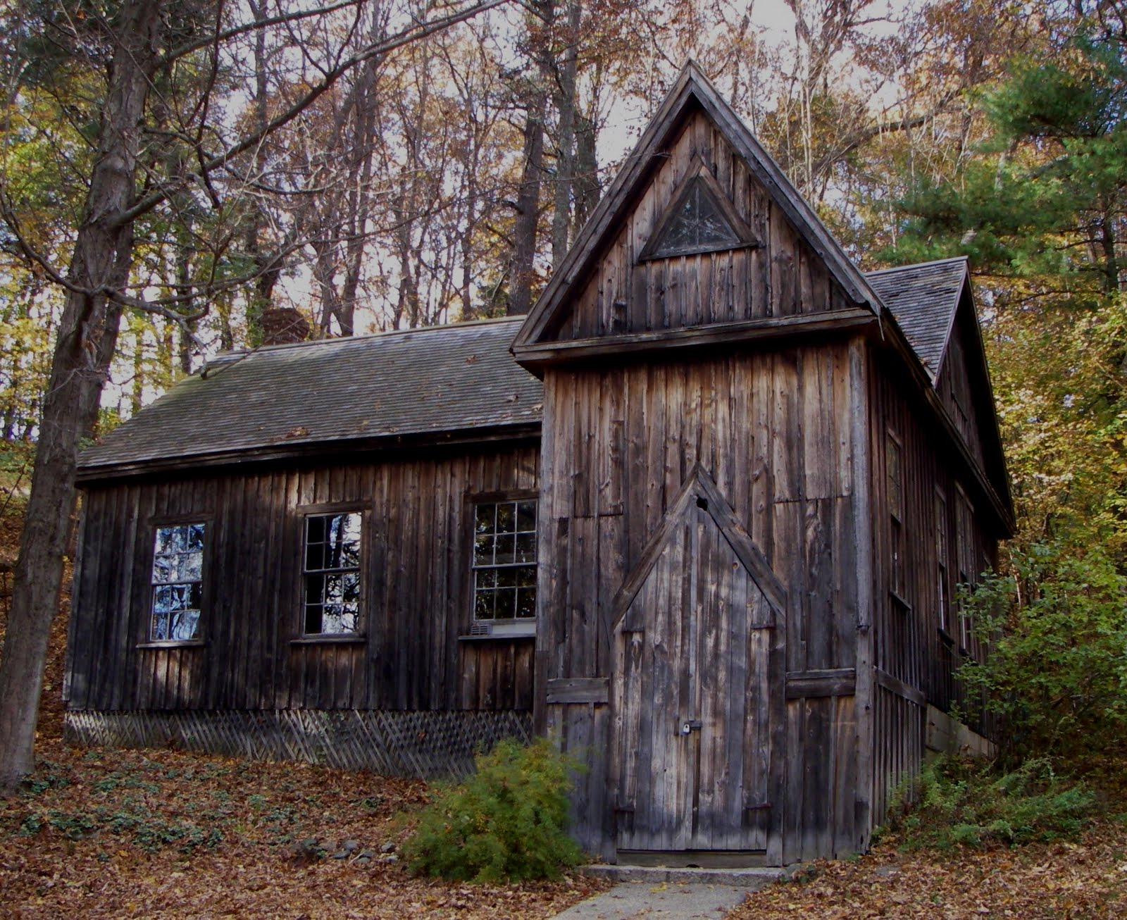 solitude essay by thoreau Free summary and analysis of visitors in henry david thoreau's walden that wonâ solitude visitors the just in case you think thoreau hates.