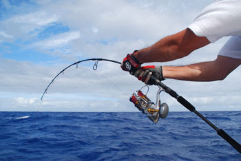 Solo vertical Jigging ... Rodrigues island - Parte 2