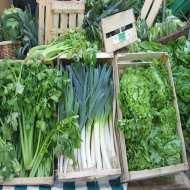 Dica-renovar-legumes-murchos
