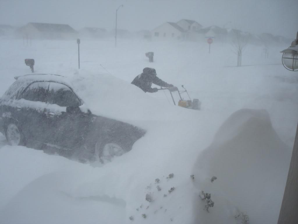 gph171ibarra blizzards