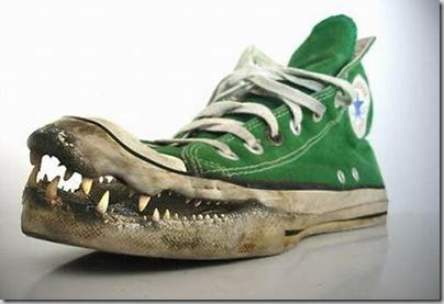 [9.+Crocodile+Converse.jpg]