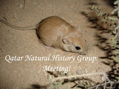 Qatar Natural History Group: Meeting