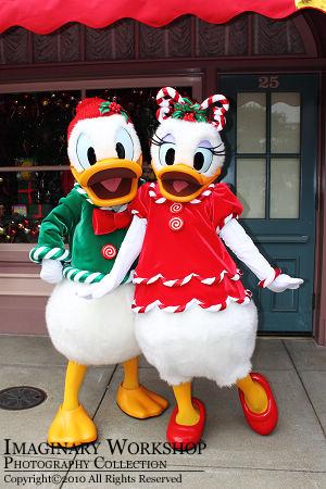 """[Hong Kong Disneyland] """"A Storybook Fantasy""""  HKDL+2010+%25E9%259B%25AA%25E4%25BA%25AE%25E8%2581%2596%25E8%25AA%2595+Donald+Daisy"""