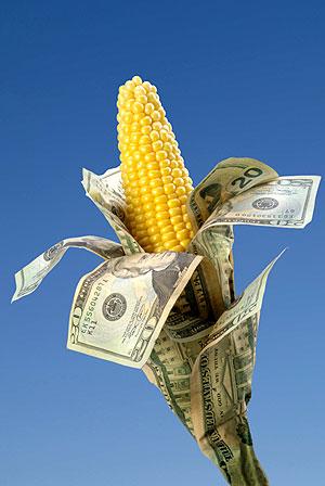 Tax breaks by the acre