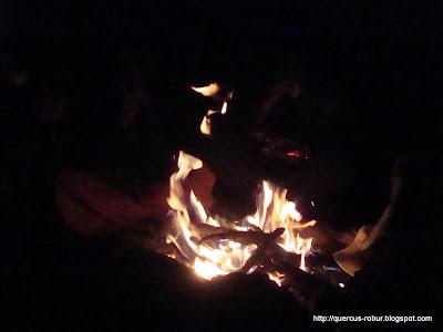 La fogata de la segunda noche en Cerro Viejo