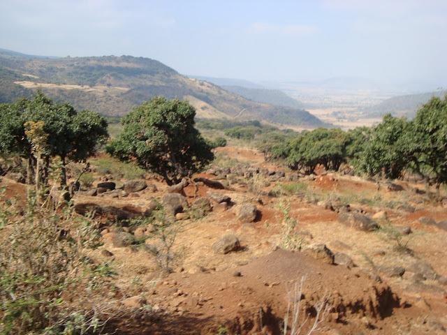 Rojo paisaje en Cerro Viejo