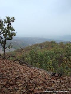 El valle de Ameca al fondo de la Sierra de Cuisillos