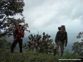 Vista del Valle de Ameca