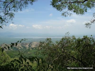 Presa de la Vega desde el Cerro Grande de Ameca