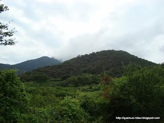Dejando el Cerro Grande de Ameca atrás...