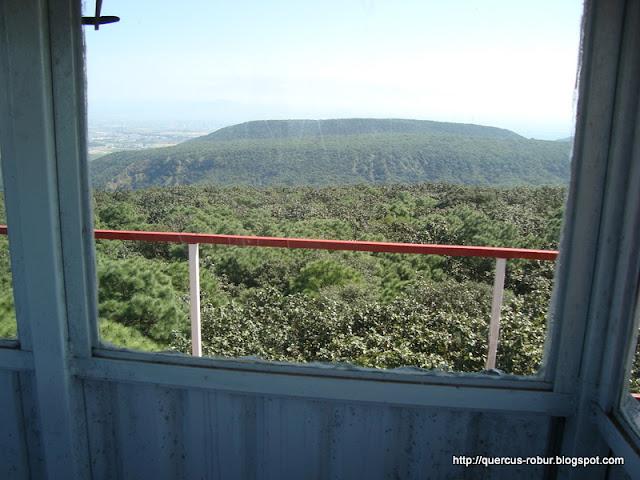 Cerro el Chapulín visto desde Torre 2 (BLP)