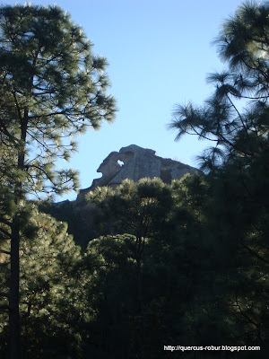 Cerro de la Campana