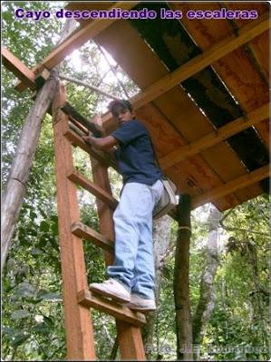 escaleras de un mirador ecologico
