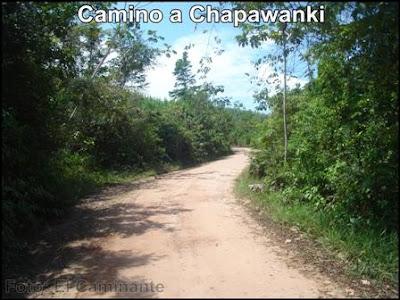 camino a la cascada de chapawanki (lamas, peru)