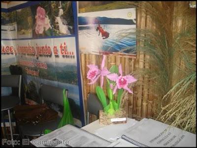 consulta turistica en el xiv festival de la orquidea 2009, moyobamba