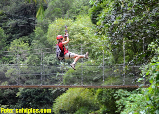 Zipline, bridge, caving, rappelling...