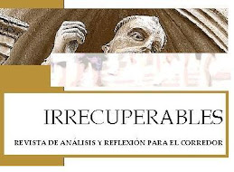 Revista Irrecuperables