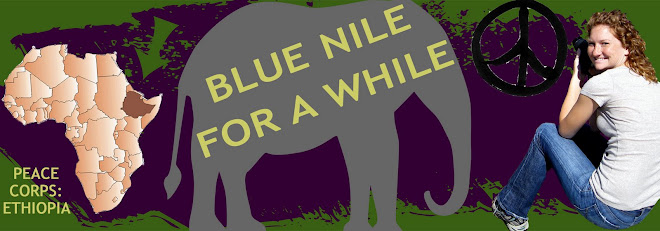 Blue Nile for a While: Peace Corps Adventures