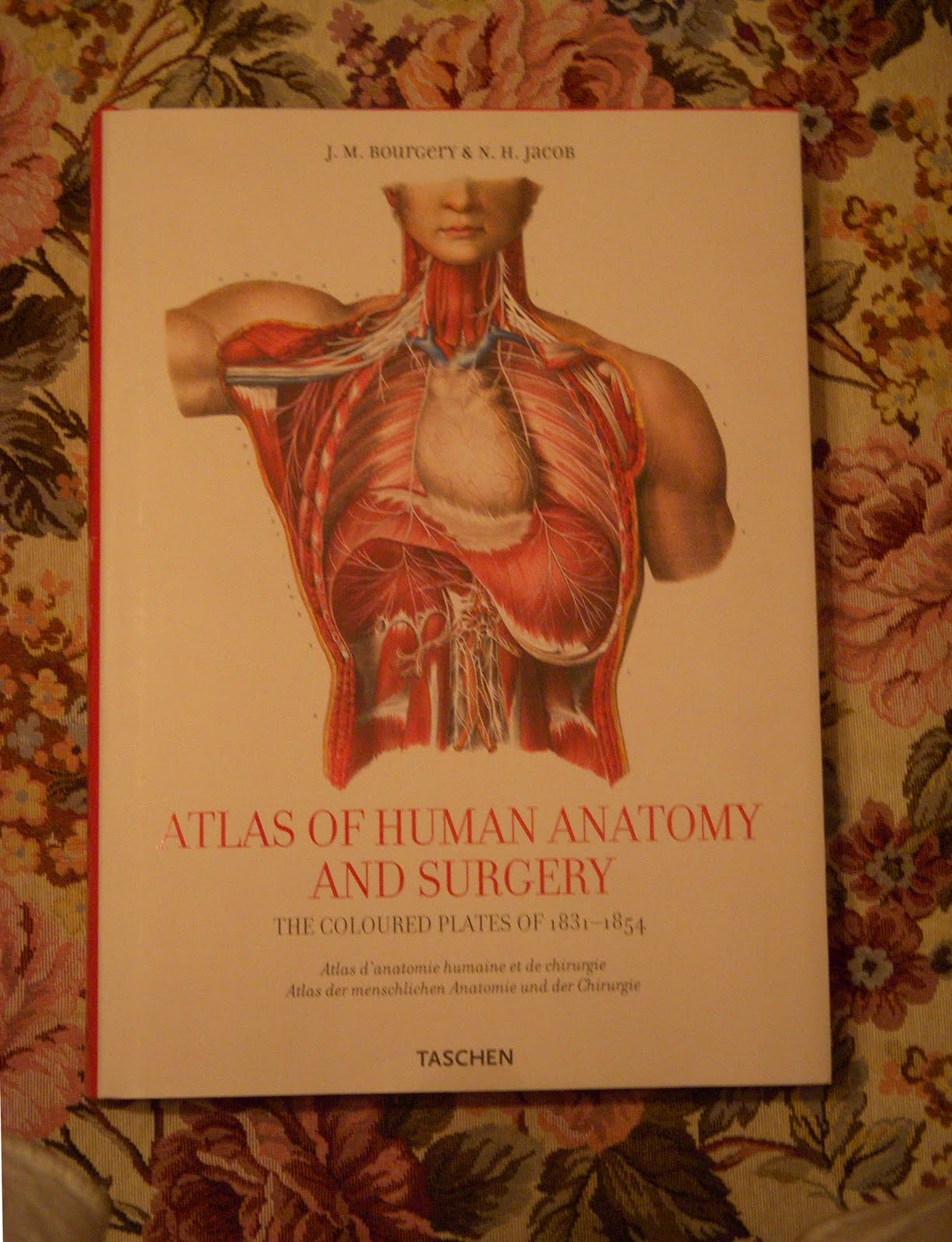 The Atlas Of Human Anatomy And Surgery Drawing Painting Journal