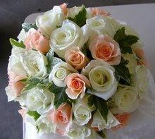rosas para kem me visita..