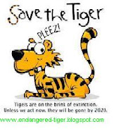 presentation on save tigers