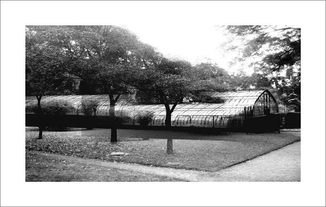 Jardin Botanico 6.30am