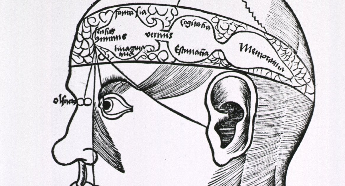 brain lock jeffrey schwartz pdf