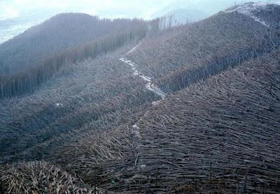 naturalE Kumpulan Foto Bencana Alam, Indah Namun Mengerikan!