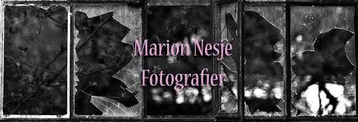 Marion Nesje Fotografier