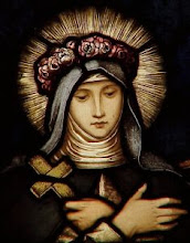 Patron of the Blog for 2009 St Rose of Lima