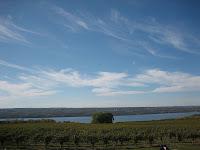 Fingerlakes vineyards