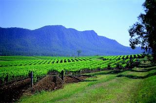 Australia Wine regions