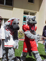 Lobos mascots on a date.