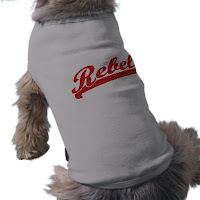 dog wearing UNLV Rebels shirt.