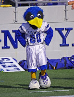 Air Force falcon mascot in football jersey.