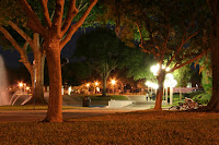 wooded nigh time landscape with street lights on the University of Central Florida campus.