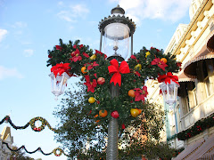 Lamp Post at Magic Kingdom