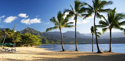 Healing Seaweed ~ Halele'a Spa, St Regis Princeville Kauai