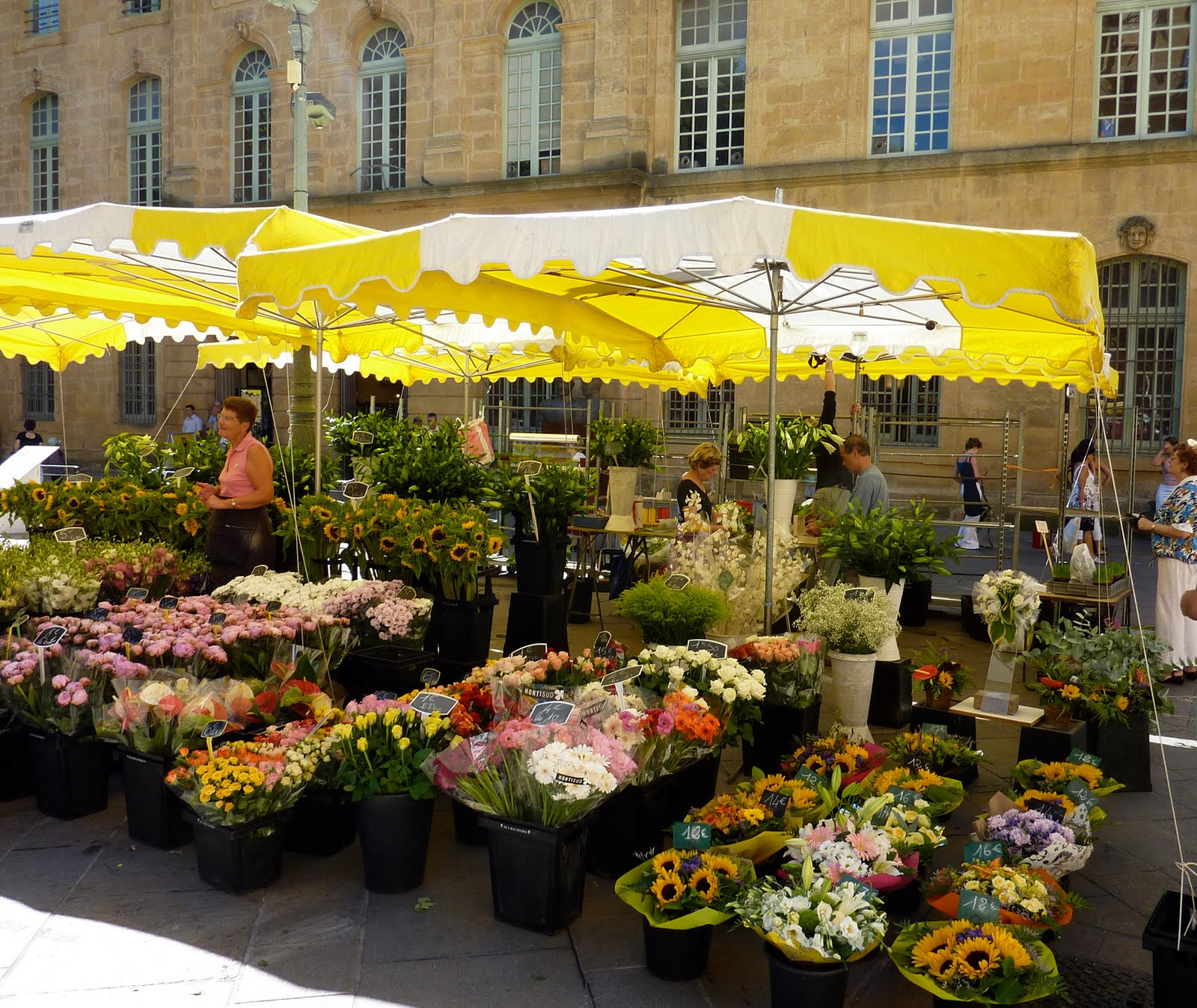 Summer In Provence Part Deux: In France, French Poodles