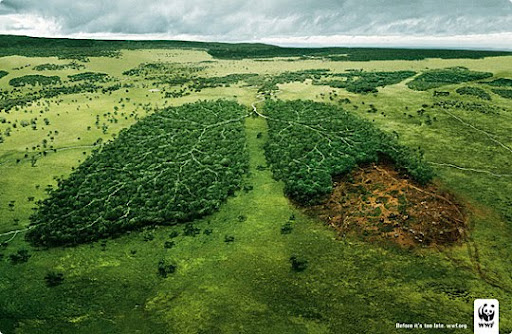Lungs 27 Alarming Advertisements Dedicated to Earth Day | Part  2