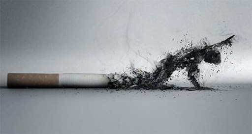 The+Smoke 65 Creative Anti Smoking Ad Campaigns Dedicated to World No Tobacco Day