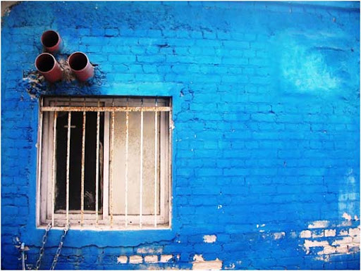 Blue by el la Beautifully Blue: Color Photography Inspiration